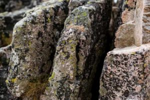 Are Rocks Biotic or Abiotic?