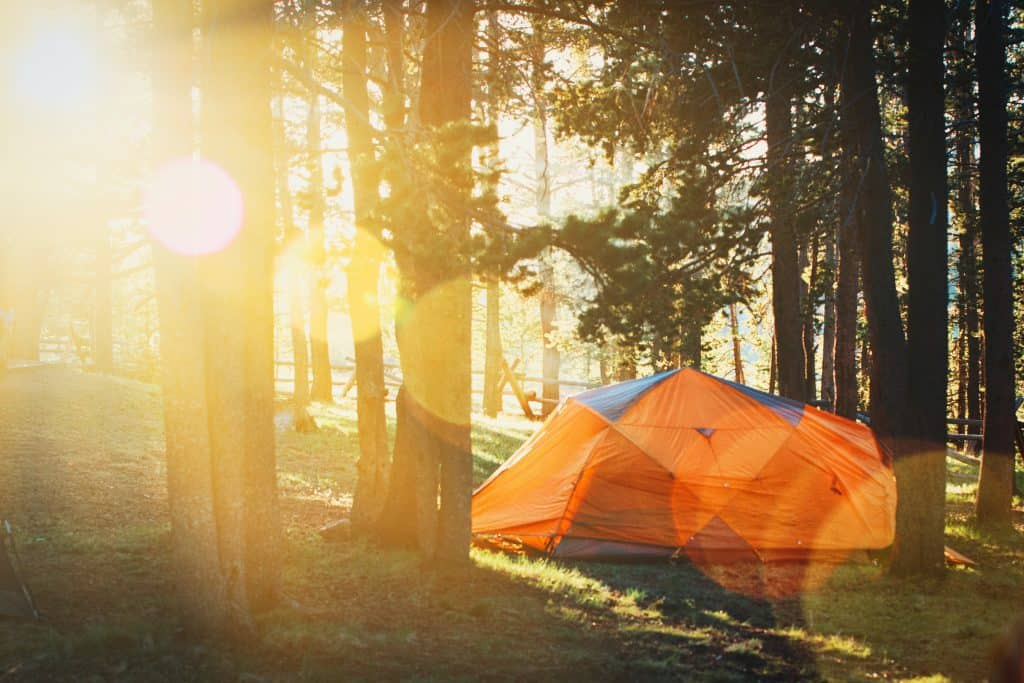 The Best Pop Up Tents For The Money