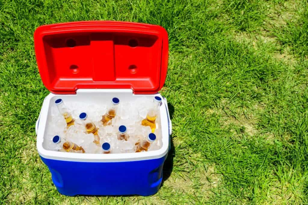 Best Camping Coolers & Ice Chests