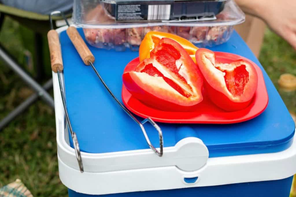 Best Camping Coolers & Ice Chests buying guide