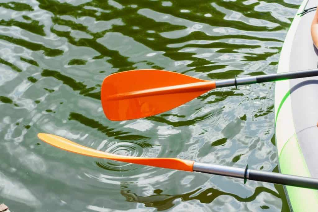 The Best Kayak Paddles For The Money