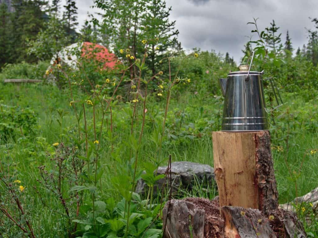 top Best Camping Percolator for the money
