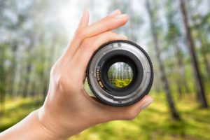 Best Monocular for Bird Watching