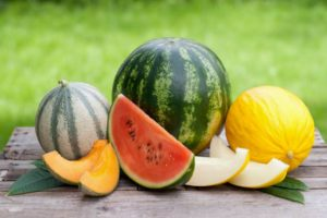 The 31 Types of Melon Around the World