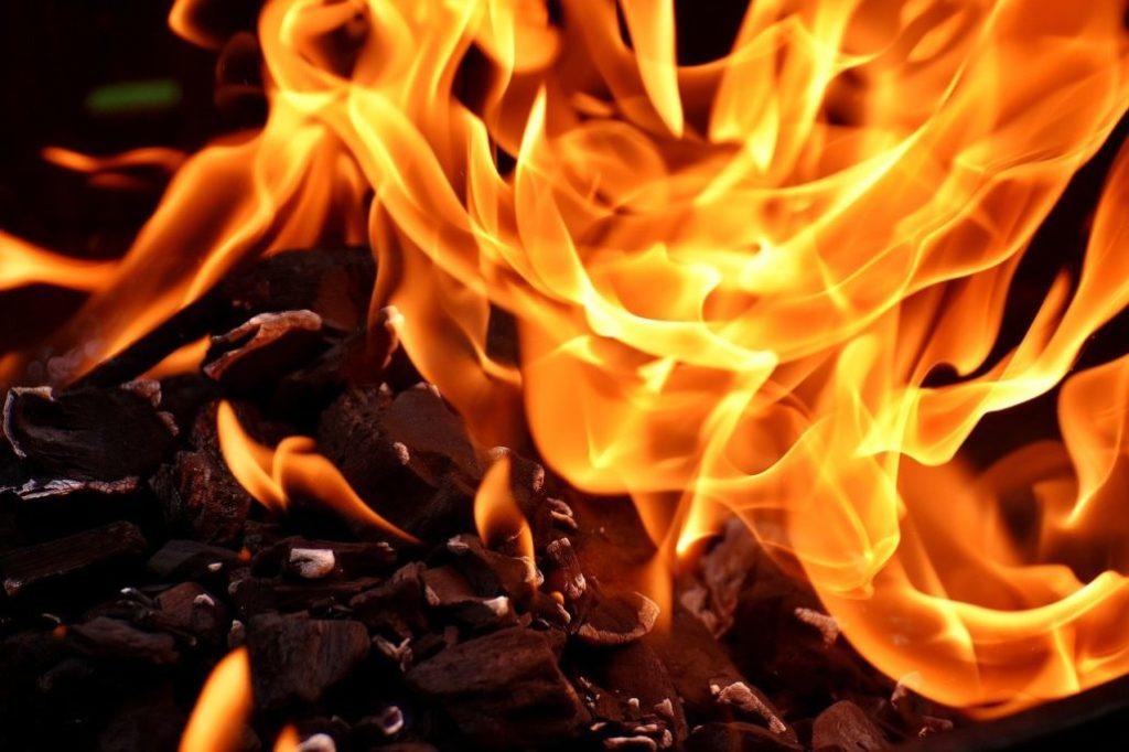 Alternative Fuels to Wood