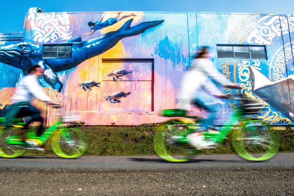 Skateboard Vs Bikes